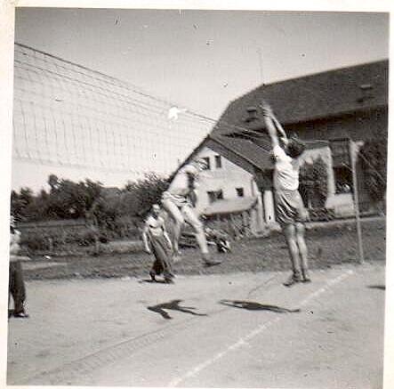 Trénink volejbalového oddílu